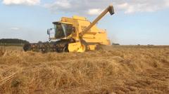 Combine harvester harvesting grass Stock Footage