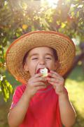 Stock Photo of boy eating apple in orchard