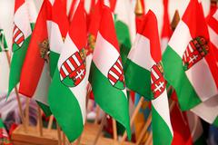 hungarian flags - stock photo