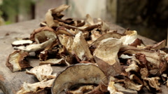 Stock Video Footage of dried mushrooms are dried in the sun. Mushrooms are on board