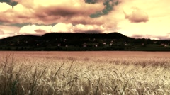 4K Magical Meadow in a Mysterious Surrealistic Fairy Tale Design Stock Footage