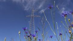 High-voltage tower on  wheat feld and cornflowers Stock Footage