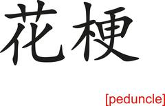 Chinese Sign for peduncle - stock illustration