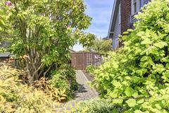 House backyard view. walkway with bushes and trees alongside Stock Photos