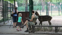 Family taking pictures of animals in zoo Stock Footage