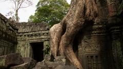 Tha-Prohm temple zoom-out timelapse 4K Stock Footage