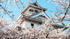 Nagahama Castle Stock Footage