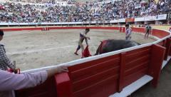 Bullfighter Kills bull in Tijuana Mexico - stock footage