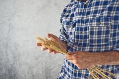 Farmer holding wheat ears Stock Photos
