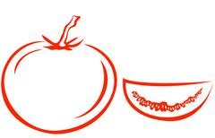 Tomato and segment Stock Illustration