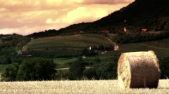 Hay Bale on Harvested Grain Field and Volcanic Hill 3 stylized Stock Footage
