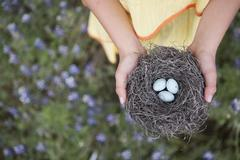a young girl holding out a woven bird nest with three small eggs. - stock photo