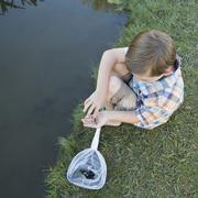 A young boy sitting on a river bank, examining a small fish, a tiddler he sco Stock Photos