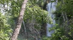 Waterfall through Black Hills undergrowth Stock Footage