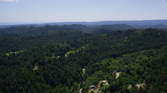 Aerial view of California State Park green forest Stock Footage