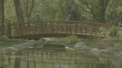In Greenery Bridge And Reflection In Water Stock Footage