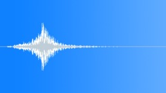 Animal Whoosh High Pitch 11 Sound Effect