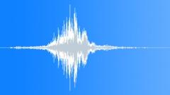 Animal Whoosh High Pitch 25 Sound Effect
