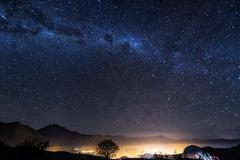Stars of vicuna, chile Stock Photos