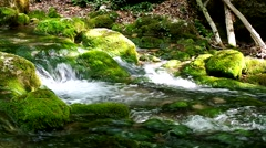 Stock Video Footage of River deep in mountain forest.
