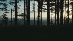 Walking Through the Forest at Sunset Stock Footage