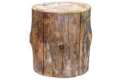 Log isolated on a white background Stock Photos