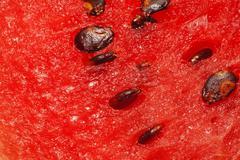 Watermelon pulp with seeds closeup Stock Photos