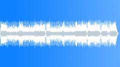 Miranda Lambert Style Pop Country Instrumental - stock music