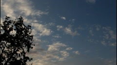 Evening sky over  forest Stock Footage