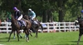 Horse Racing lucky winner enjoys his win of the race HD Footage