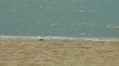 Thailand Pattaya 026 ravindra beach resort, close up glittering water and sand Stock Footage
