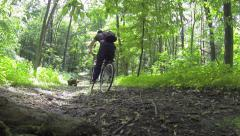 Cyclist in forest Stock Footage