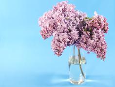 Bouquet of violet lilac Stock Photos