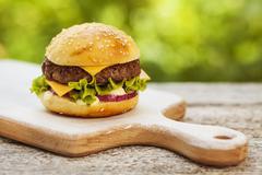 tasty cheeseburger - stock photo