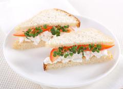 Vegetarian sandwiches Stock Photos