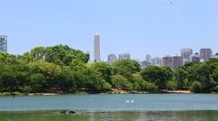 Ibirapuera Park in Sao Paulo, Brazil. Stock Footage