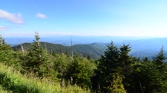 Panoramic view from clingmans dome great smoky mountains Stock Footage