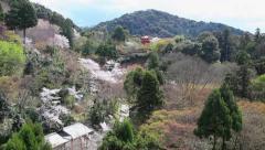 8of10 Kiyomizu-dera Park with trees, cherry blossom, Kyoto, Japan, Asia Stock Footage