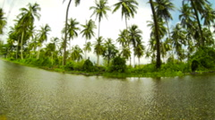 Tilt shift time lapse of wet road surrounded by tropical greenery. - stock footage