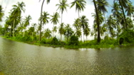 Stock Video Footage of Tilt shift time lapse of wet road surrounded by tropical greenery.