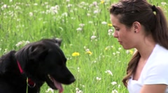 Stock Video Footage of Mistress training clever black dog
