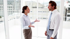 Business team arguing by large window - stock footage