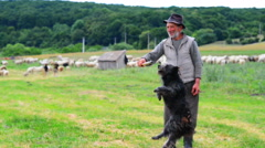 Old shepperd man playing with his dog near flock Stock Footage