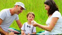 Family with one kid at three years anniversary in nature - stock footage
