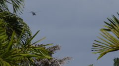 ATF Black Hawk helicopter behind trees 2 Stock Footage