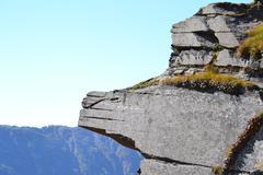 Pride Rock - stock photo