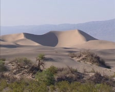 Pan - Death Valley Sand Dunes in Stovepipe Wells area + sparse vegetation Stock Footage