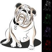 Bulldog drawing set Stock Illustration
