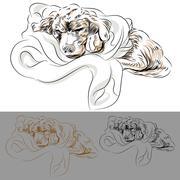 Labrador puppy sleeping in a blanket Stock Illustration