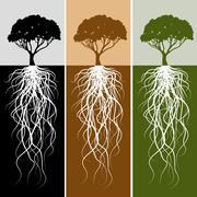 Vertical tree root banner set Stock Illustration